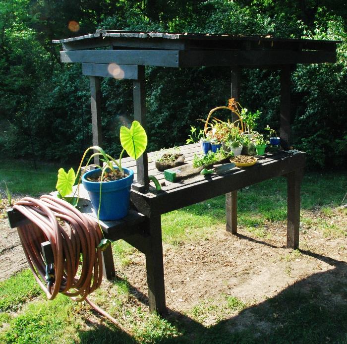 Happy friday spy garden for Corner garden office