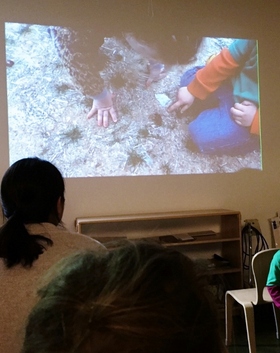 Final Project was a movie about animals that live in the forest at Baby's school (that's Baby on screen pointing out deer tracks)