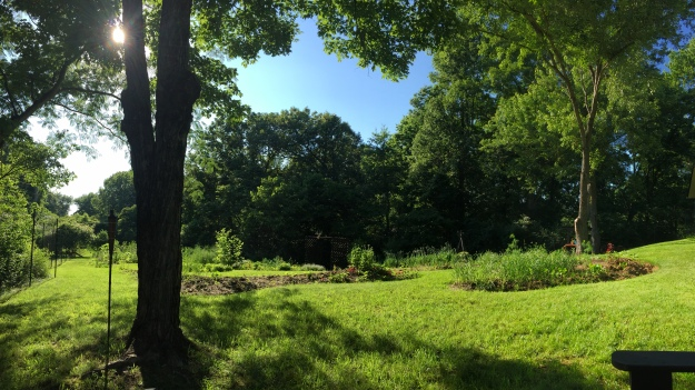 "Garden panorama (taken from the garden ""living room"")"