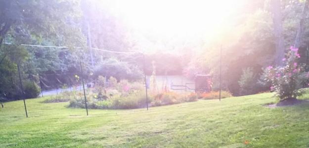 Spy Garden 9.14.15