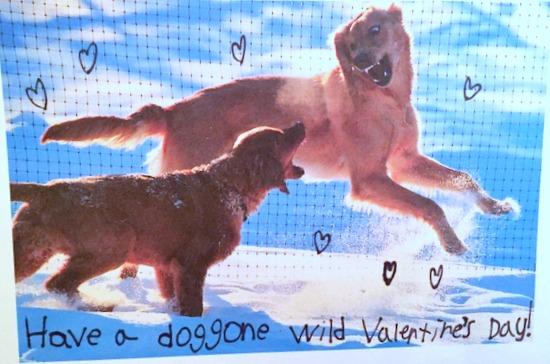 Last year's valentine hahaha