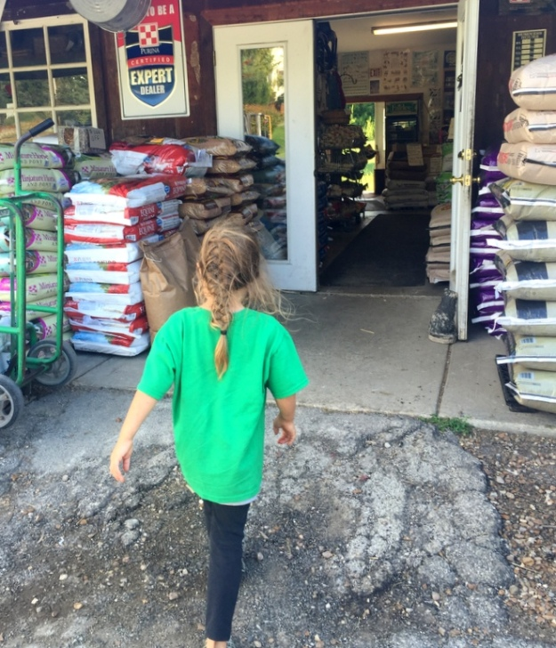 Heading into the feed store to pick up a bag of bunny food