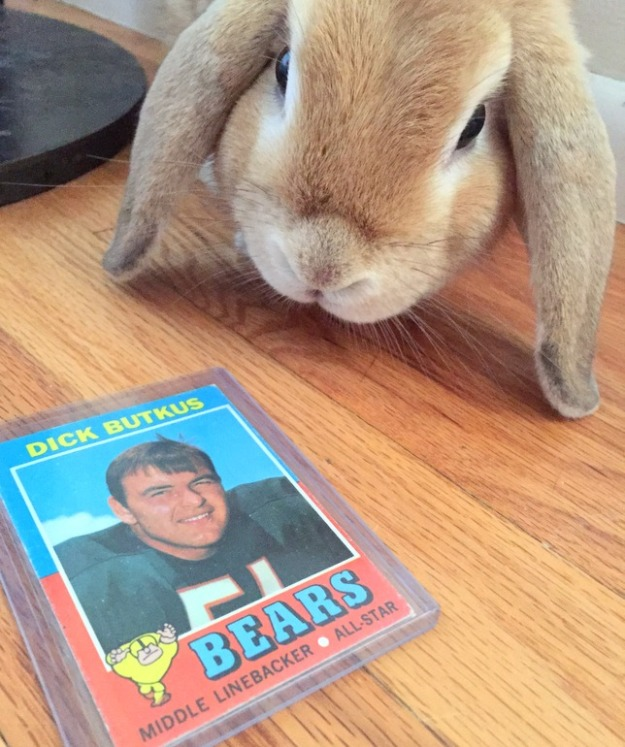 Butkus checking out his namesake's card