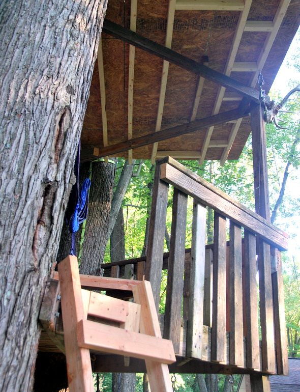 Tree fort upgrades