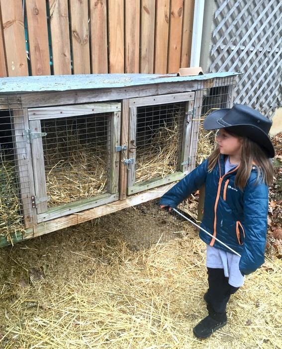 Little Bunny Farmer