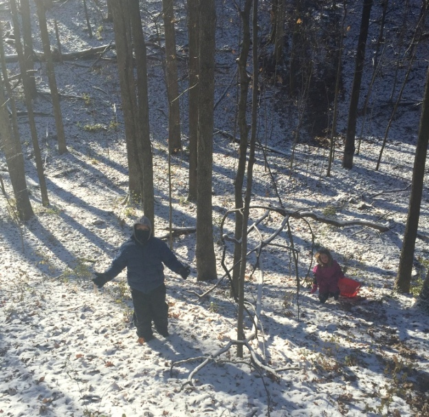 Sledding in the woods