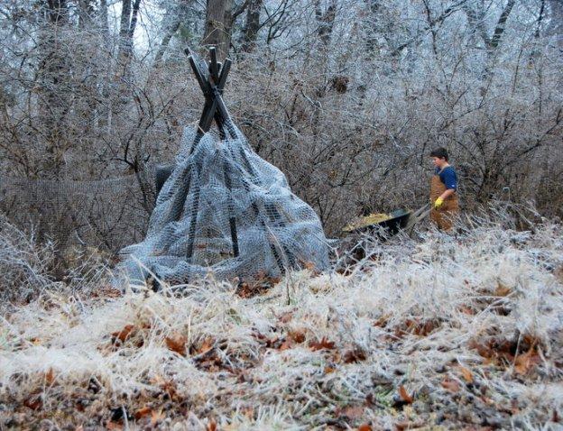 Icy Bunny Castle